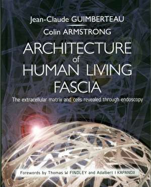 Endoscopic Anatomy of the Fascia imagine