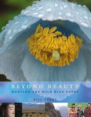 Beyond Beauty imagine