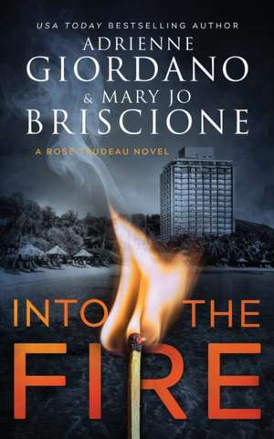 Into The Fire: A Gripping Amateur Sleuth Mystery de Mary Jo Briscione