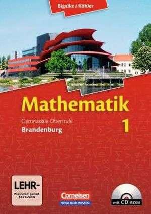 Mathematik Sekundarstufe II - Brandenburg - Neubearbeitung 2012 / Band 1 - Schuelerbuch mit CD-ROM