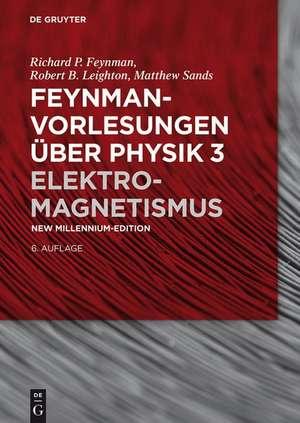 Elektromagnetismus de Richard P. Feynman