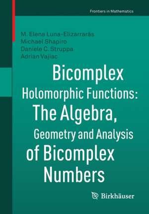 Bicomplex Holomorphic Functions imagine
