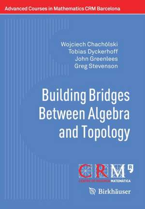 Building Bridges Between Algebra and Topology de Wojciech Chachólski