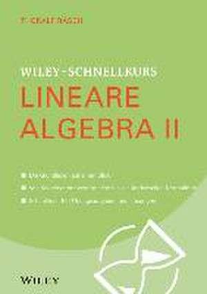 Wiley–Schnellkurs Lineare Algebra II