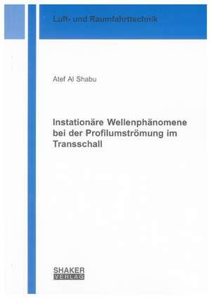 Instationäre Wellenphänomene bei der Profilumströmung im Transschall de Atef Al Shabu