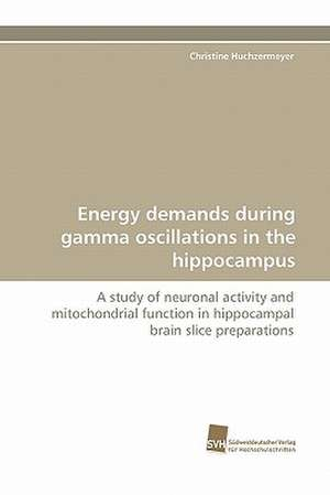 Energy Demands During Gamma Oscillations in the Hippocampus