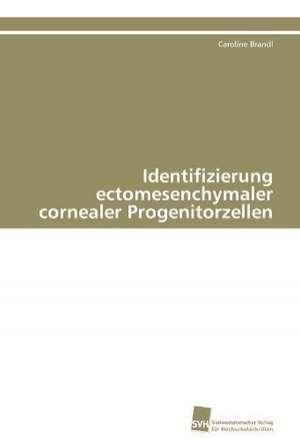 Identifizierung Ectomesenchymaler Cornealer Progenitorzellen