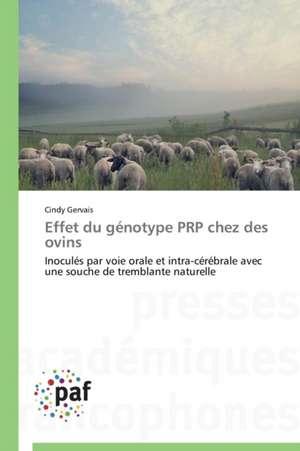 Effet du genotype PRP chez des ovins