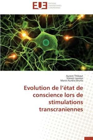 Evolution de L'Etat de Conscience Lors de Stimulations Transcraniennes