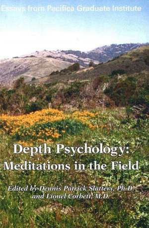 Depth Psychology, 2nd Edition imagine
