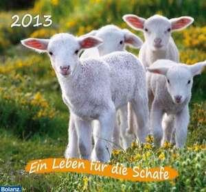 Ein Leben für die Schafe 2020 de Karl-Heinz Nill