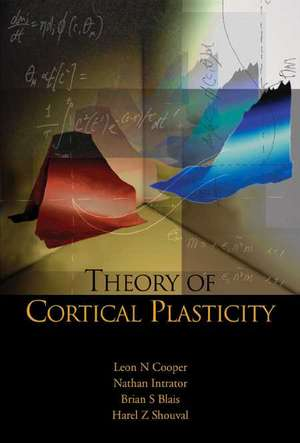 Theory of Cortical Plasticity