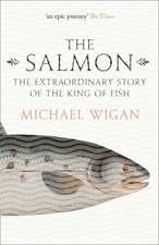 The Salmon
