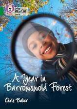 Year in Barrowswold Forest: Band 15/Emerald