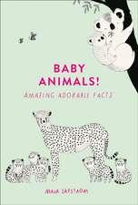 Safstrom, M: Baby Animals!
