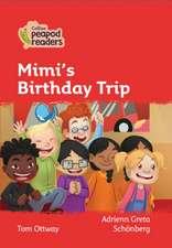 Level 5 - Mimi's Birthday Mystery