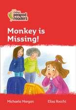 Level 5 - Monkey is Missing