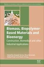 Biomass, Biopolymer-Based Materials and Bioenergy