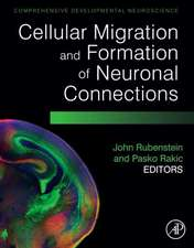 Cellular Migration and Formation of Neuronal Connections: Comprehensive Developmental Neuroscience