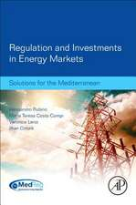 Regulation and Investments in Energy Markets: Solutions for the Mediterranean