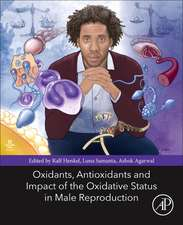 Oxidants, Antioxidants, and Impact of the Oxidative Status in Male Reproduction