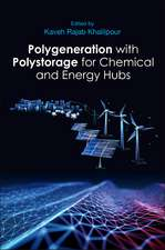 Polygeneration with Polystorage: For Chemical and Energy Hubs