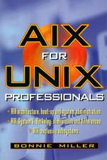 AIX for Unix Professionals:  How Corporations Get the Most Value from Exploiting Their Digital Investments