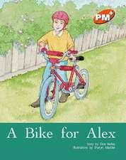 A Bike for Alex PM PLUS Orange 15