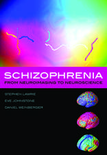 Schizophrenia: From neuroimaging to neuroscience