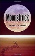 Moonstruck: How lunar cycles affect life