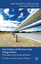 Geo-Politics of the Euro-Asia Energy Nexus: The European Union, Russia and Turkey