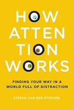 How Attention Works – Finding Your Way in a World Full of Distraction