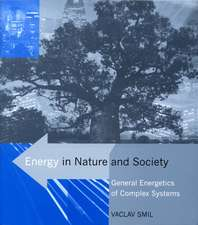 Energy in Nature and Society – General Energetics of Complex Systems