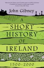 A Short History of Ireland, 1500–2000