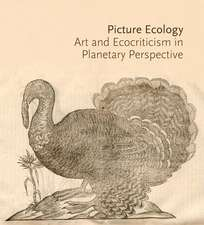 Picture Ecology – Art and Ecocriticism in Planetary Perspective
