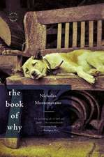 The Book of Why: A Novel
