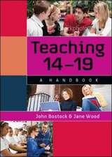 Teaching 14-19: A Handbook
