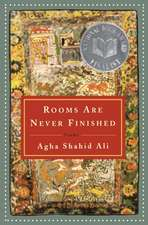 Rooms Are Never Finished – Poems
