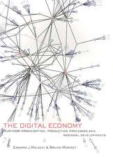 The Digital Economy: Business Organization, Production Processes and Regional Developments