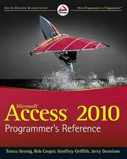 Access 2010 Programmer′s Reference