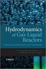Hydrodynamics of Gas–Liquid Reactors: Normal Operation and Upset Conditions
