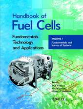 Handbook of Fuel Cells: Fundamentals, Technology, Applications, 4 Volume Set