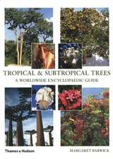 Tropical & Subtropical Trees