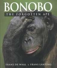 Bonobo – The Forgotten Ape