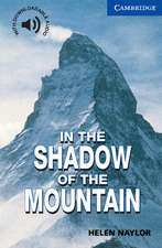 In the Shadow of the Mountain Level 5