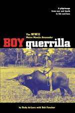Boy Guerrilla