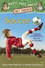 Soccer:  Soccer on Sunday