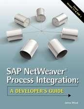 SAP Netweaver(r) Process Integration:  A Developer's Guide