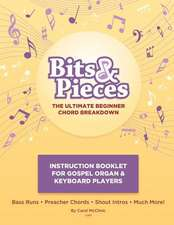 Bitsandpiecesbeginnerchordbreakdown Instruction Booklet