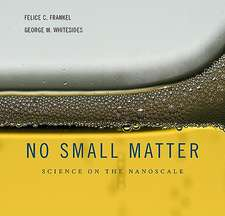 No Small Matter – Science on the Nanoscale